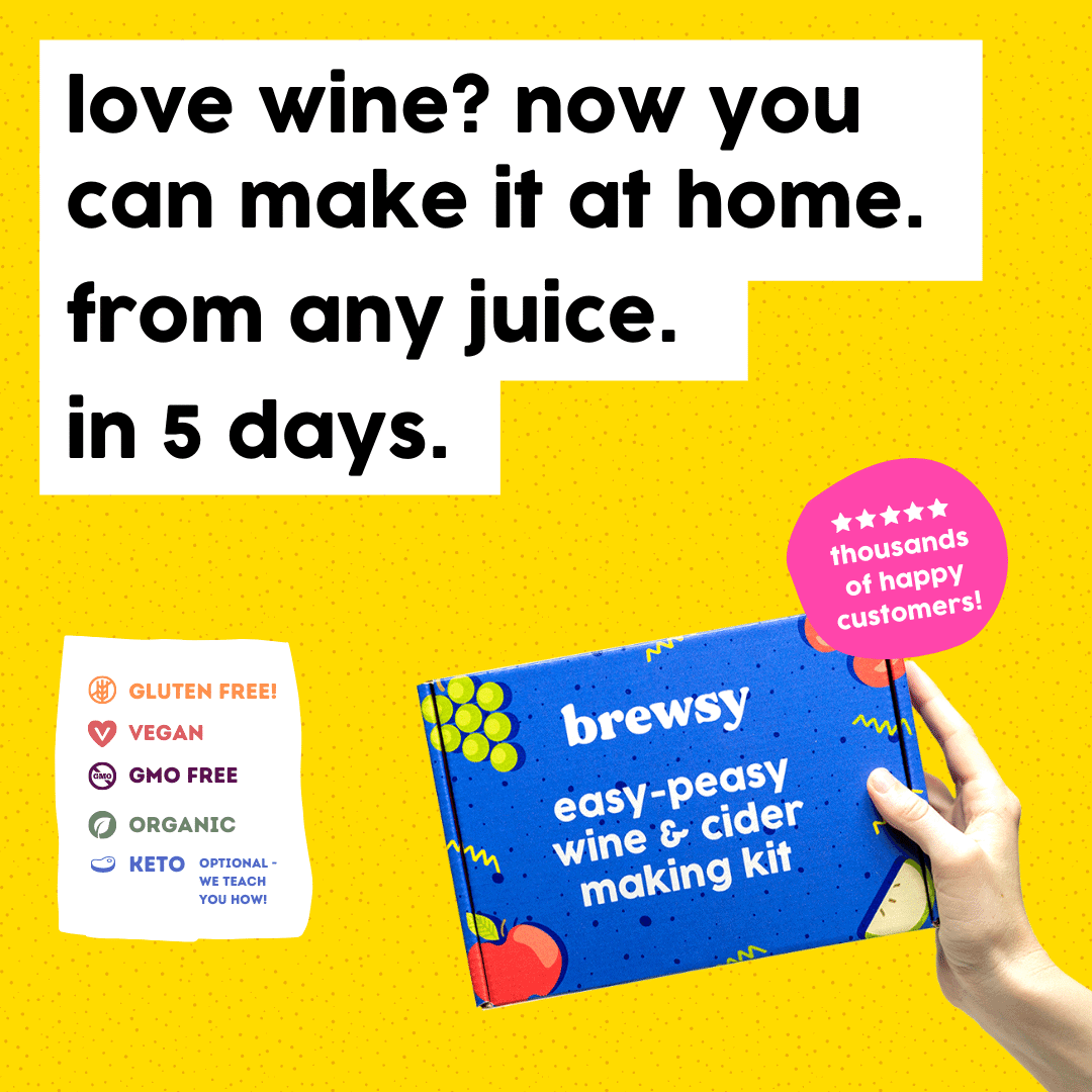 brewsy wine at home kit