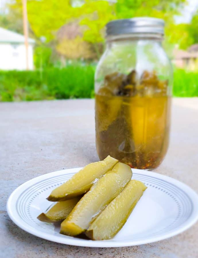 Canning Pickles How to Step-by-Step